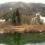 Kranjska gora_Zelenci